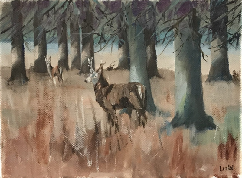 England. Deer in Richmond Park.