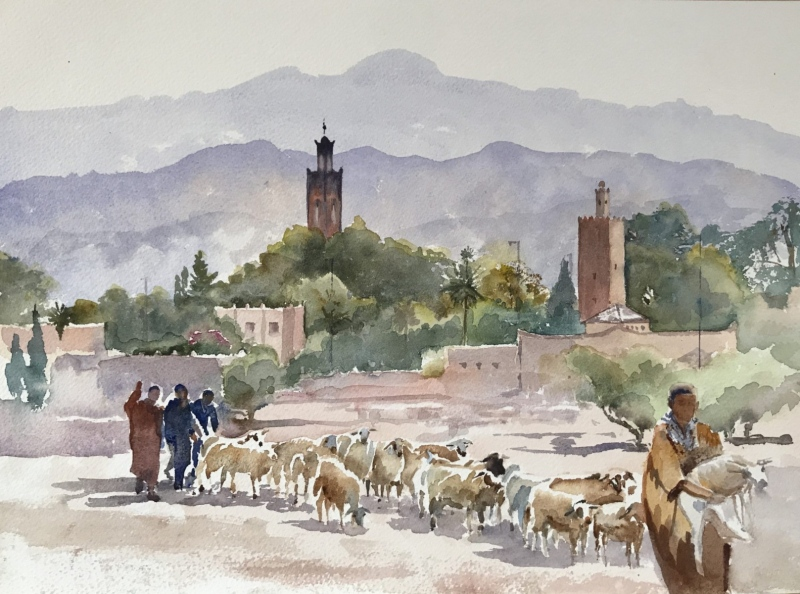 Morocco. From Taroudant market.