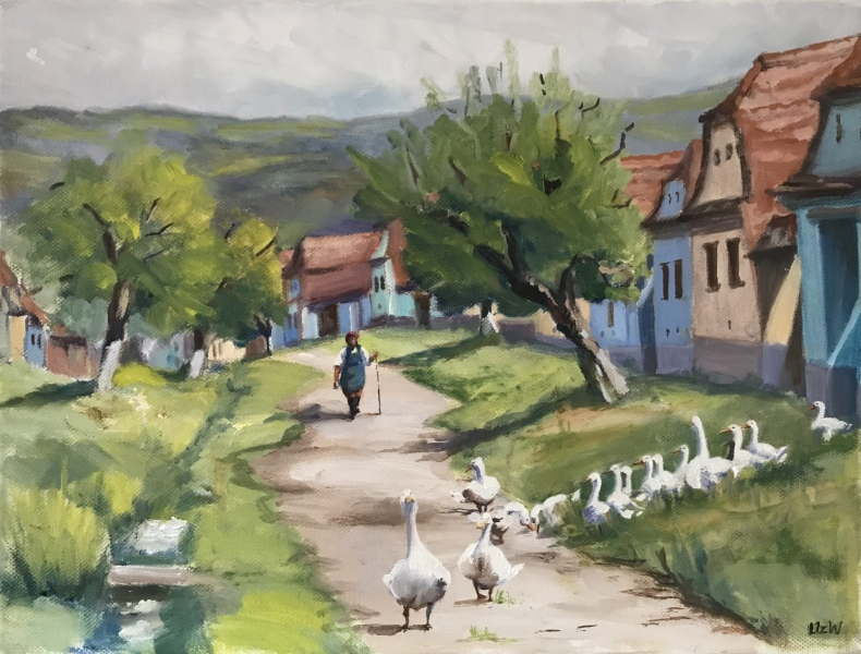 Transylvania. Gerda's ducks, Viscri.